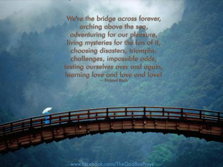 """We're the bridge across forever, arching above the sea, adventuring for our pleasure, living mysteries for the fun of it, choosing disasters triumphs challenges impossible odds, testing ourselves over and again, learning love and love and love!"" ― Richard Bach, The Bridge Across Forever: A True Love Story"