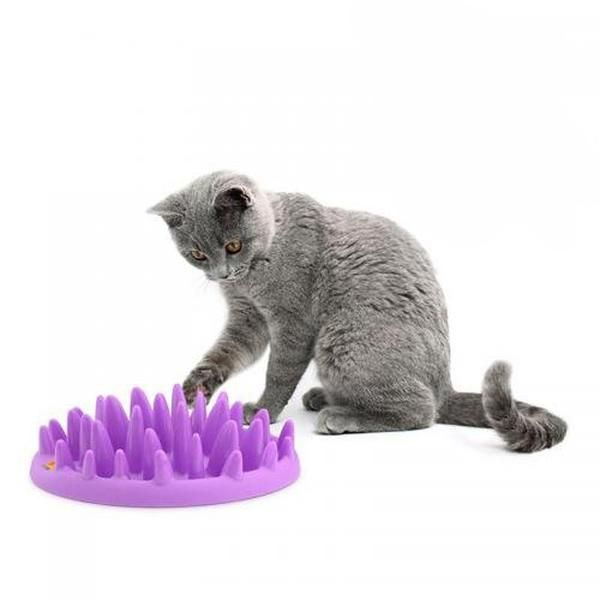 Hard Silicone Cat Slow Feeder Dog Feeder Slow Feeder Pet Feeder