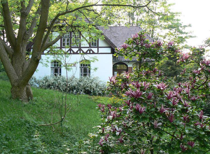 Alter Botanischer Garten Kiel: 566 Best Images About Woodland Cottage On Pinterest