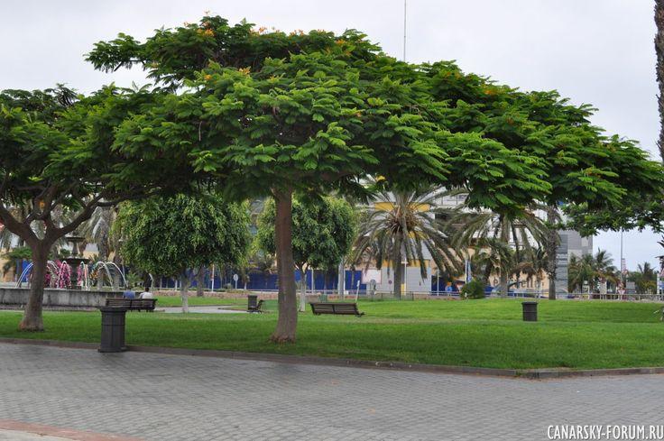 Las Palmas - Летнее путешествие 2013 - Фотогалерея - Форум об острове Гран Канария