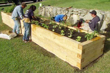 Raised Beds In Biointensive Gardening
