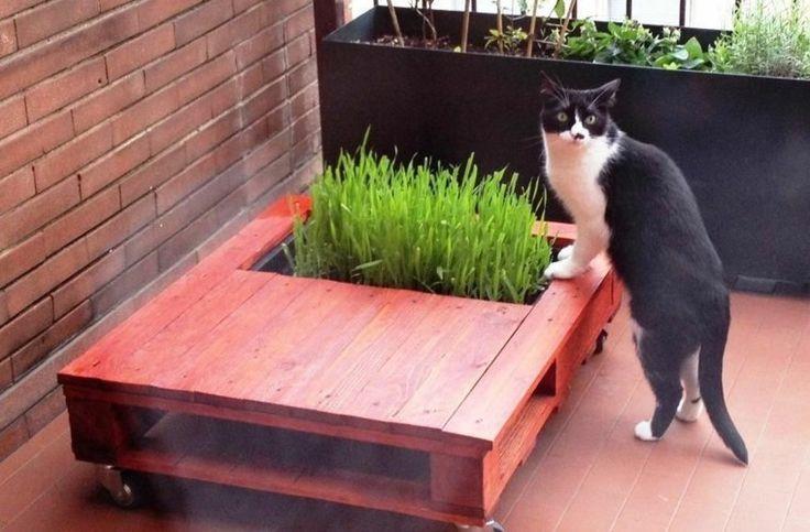 les 25 meilleures id es de la cat gorie jardiniere bois pas cher sur pinterest plante. Black Bedroom Furniture Sets. Home Design Ideas