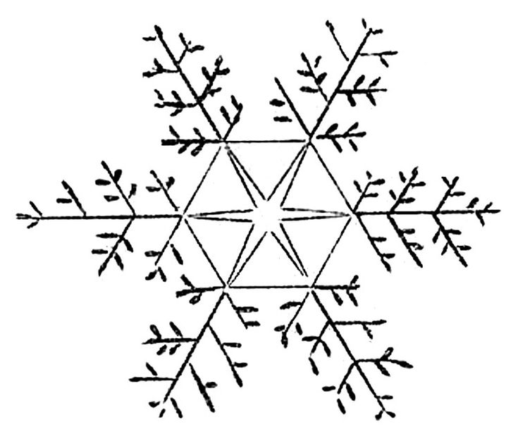 Click on Images to Enlarge Here are 3 pretty Vintage Snowflakes for you. These came from an early encyclopedia. These are drawings of actual frozen snow crystals!! You may recall some similar ones that I posted last year HERE. The originals are black, but I made some blue ones for you this time around, as...Read More »