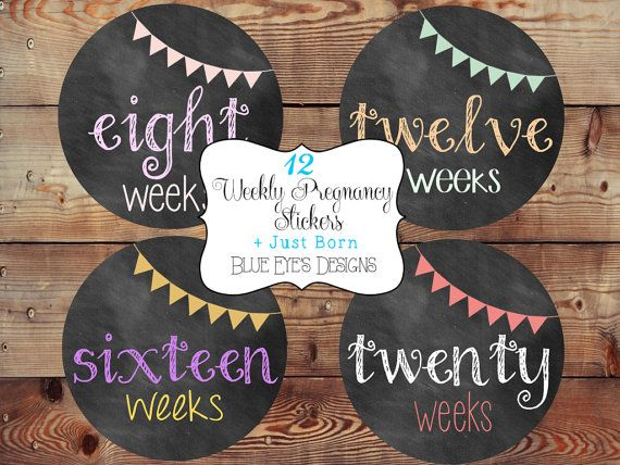 Weekly Pregnancy Stickers,Pregnancy Stickers,Chalkboard Pregnancy Stickers,Pregnancy Announcement,Pregnancy Reveal,Belly Bump Stickers,Bump on Etsy, $12.50