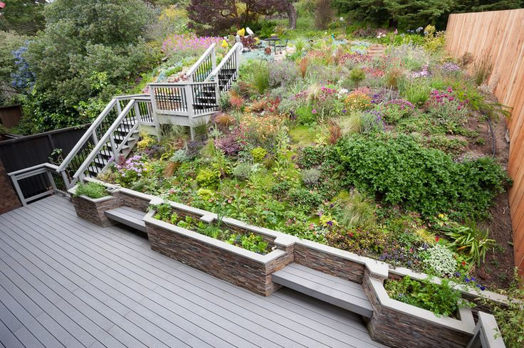 Planting a slope with a relaxed mix of hardy low Relaxed backyard deck ideas