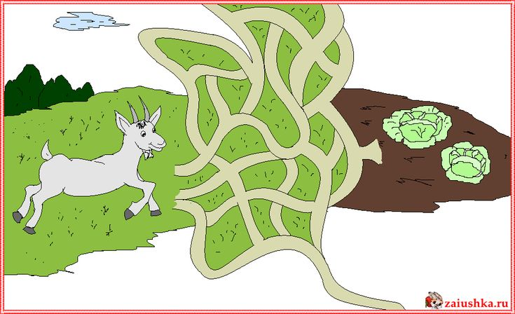 Козел и капуста, лабиринт