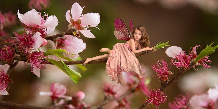 Fairyland Photography