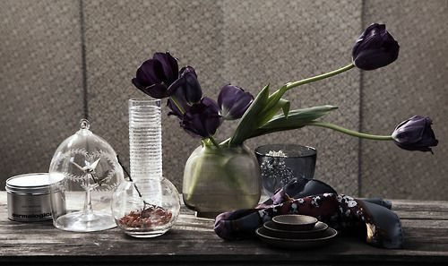 mycircleofsenses: rydengandco: Still Life Photo: Ole Musken