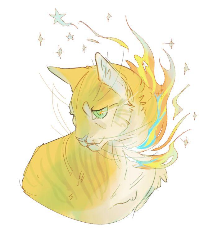 Warrior Cat Fanfiction Ideas