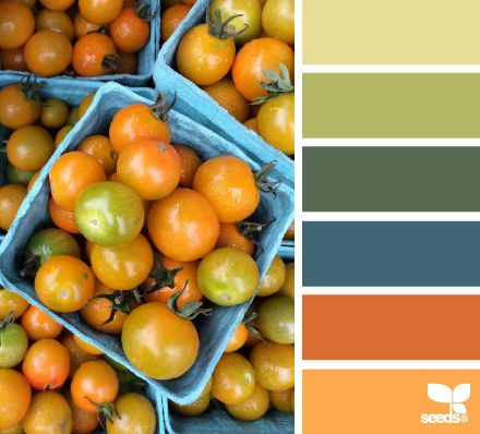 Tomato Spectrum - http://design-seeds.com/index.php/home/entry/tomato-spectrum
