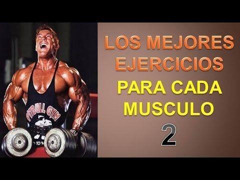 El Mejor Ejercicio Para Cada Musculo - http://ganarmusculoss.blogspot.com  Descubre cual es el mejor ejercicio para cada musculo segun dicen algunos estudios realizados que revelan que estos son los mejores ejercicios para aumentar masa muscular para cada musculo. El mejor ejercicio para cuádriceps: sentadillas frontales