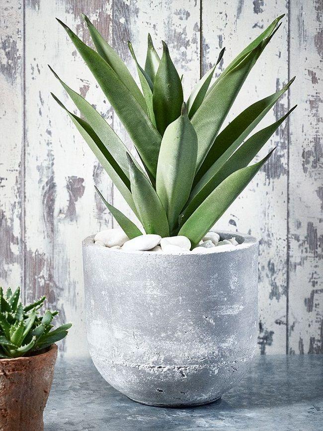 Faux Succulent Plants Aloe Vera Potted Plants Gardens