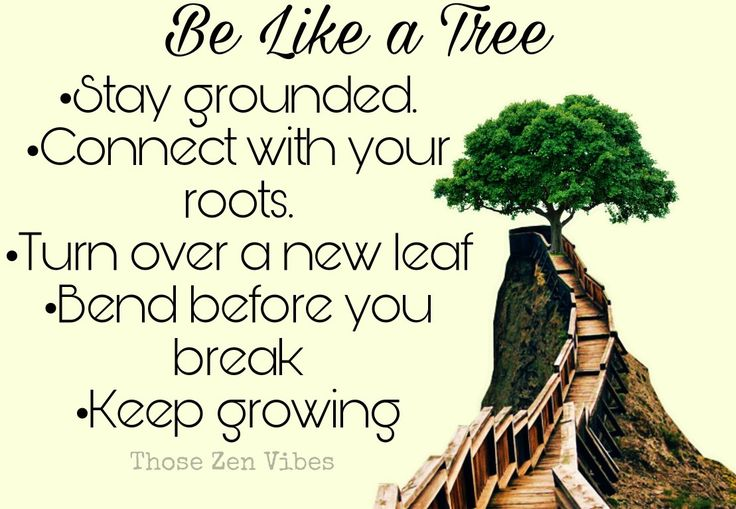 Be Like a Tree ~ Stay grounded, connect with your roots, turn over a new leaf, bend before you break, keep growing. Spiritual wisdom and advice ~ Those Zen Vibes 🌸🕉