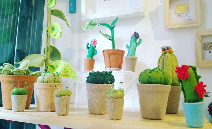 Plant delivery! #cactus #plants #cactuslover #plantlover #crazyplantlady #crazyplantperson #textileplants #shoplocal #itsinnottingham #buyhandmade #handmadenottingham