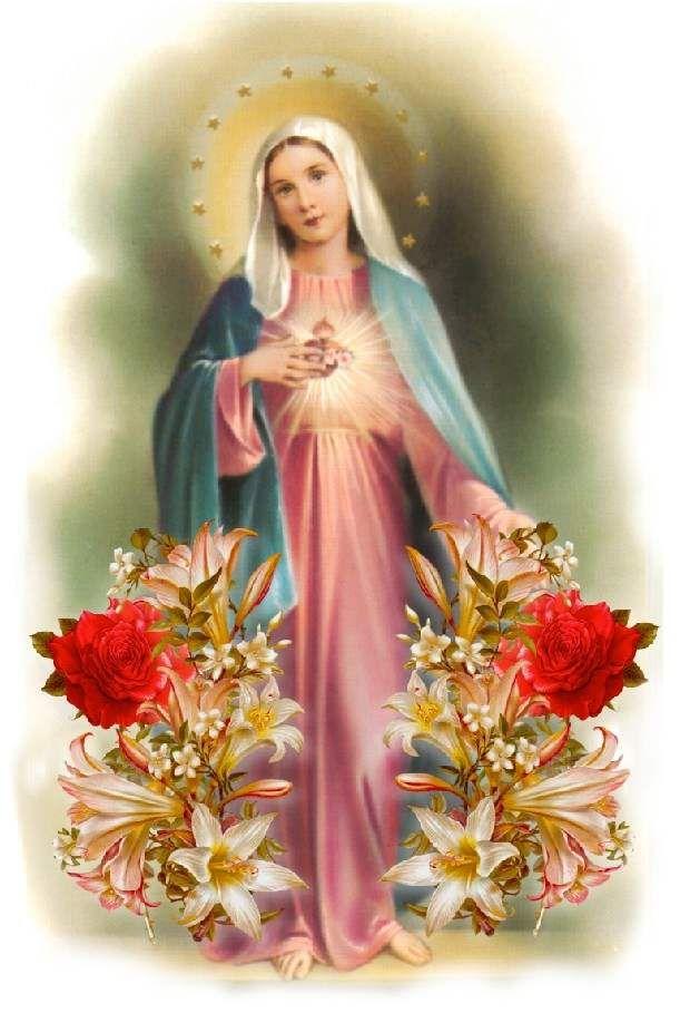 Rosario por los difuntos - Misterios Dolorosos | Martes y Viernes | Salve Reina - A Jesús por María!