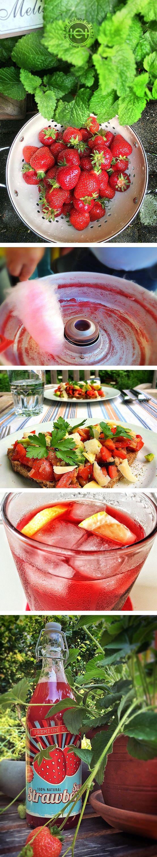 Süße rote Sommer-Früchte, papp-süße Zuckerwatte in verlockendem Rosa, hausgemachter Erdbeer-Sirup und knusprige Appetizer bereiten uns einen kulinarischen Sommertanz auf der Zunge.