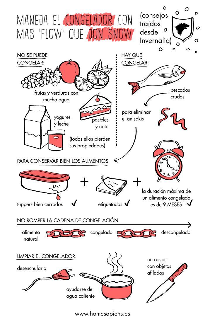 Productos no aptos para congelar y otros consejos para novatos http://homesapiens.es/2015/04/productos-no-aptos-para-congelar-y-otros-consejos-para-novatos/