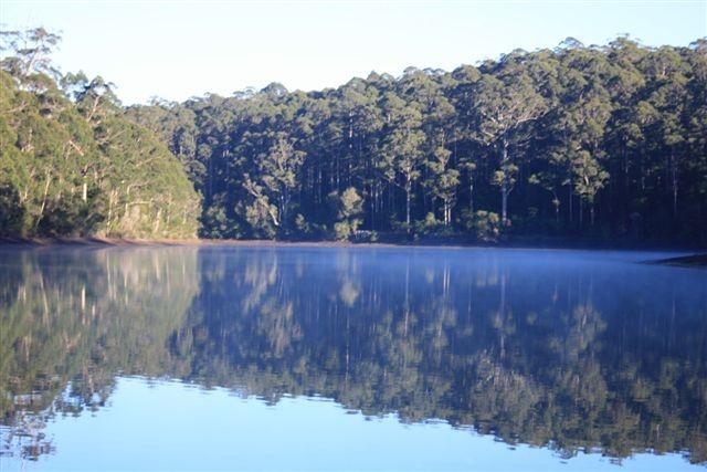 Big Brook Dam, Western Australia....Taken by Daphne Greenhow