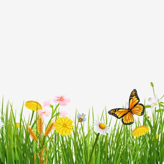 Spring Grass With Butterflies Beautiful Background Butterfly Green Grass Png Transparent Clipart Image And Psd File For Free Download Flower Painting Grass Clipart Garden Clipart