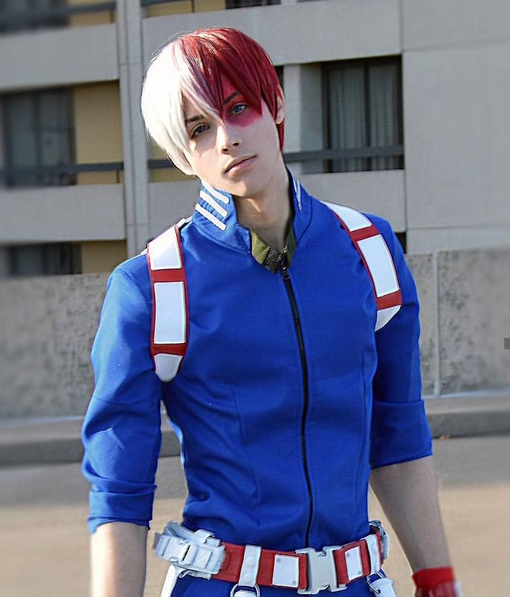 Is this the real todoroki for