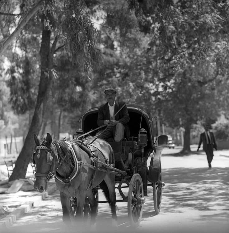 athens, greece may 1959  horse-drawn carriage, featuring the photographs of nick dewolf