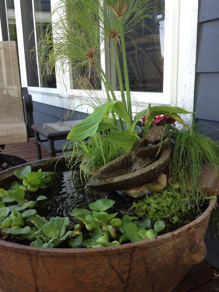 Water Gardens: Best 25+ Container Water Gardens Ideas On Pinterest