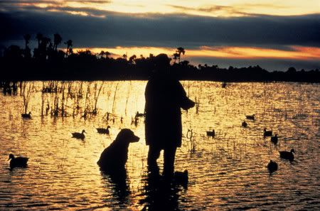 duck hunting | duck hunting - Cool Graphic