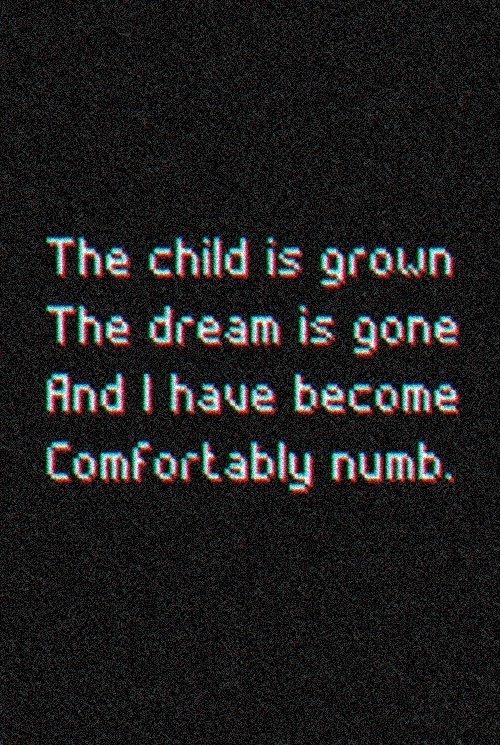 Comfortably Numb -Pink Floyd