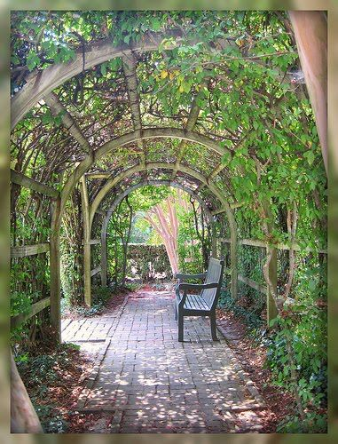 Living In Williamsburg, Virginia: Ivy Covered Patio in Colonial Williamsburg, Williamsburg, Virginia