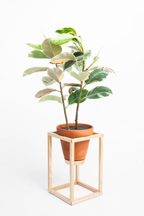 The Tall Frame Planter is an indoor planter / Trey Jones Studio