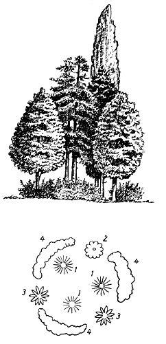 Рис. 18. Сложная ландшафтная группа: 1 — сосна крымская; 2 — дуб черешчатый пирамидальный; 3 - каштан конский; 4 — барбарис обыкновенный