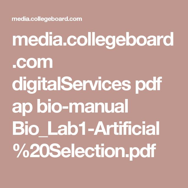 80 best cellular respiration and photosynthesis images on pinterest mediallegeboard digitalservices pdf ap bio manual biolab1 artificial20selection fandeluxe Gallery