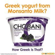 Ask Chobani To not Feed  cows gmo.
