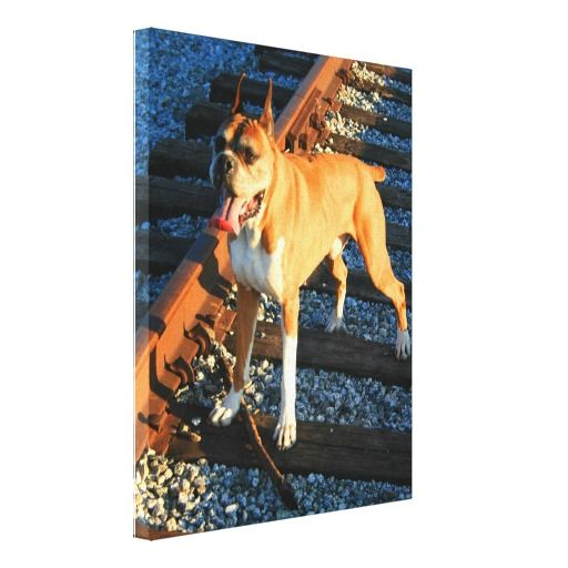 >>>best recommended          	boxer dog canvas print           	boxer dog canvas print We provide you all shopping site and all informations in our go to store link. You will see low prices onDiscount Deals          	boxer dog canvas print please follow the link to see fully reviews...Cleck Hot Deals >>> http://www.zazzle.com/boxer_dog_canvas_print-192119124622686308?rf=238627982471231924&zbar=1&tc=terrest