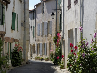 Ile De Re, France. Holly hocks and shutters.