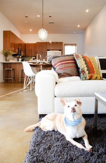 kilim: House Tours, Kilim Pillows, Inspiration, Dogs, Apartment Therapy, Living Room, Apartments, Pillow Primer