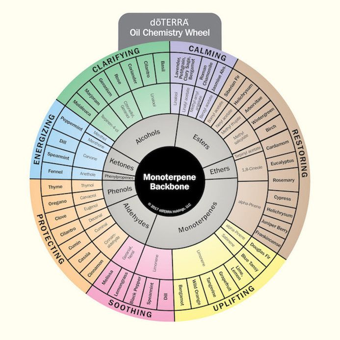 doTERRA Oil Chemistry Wheel is a tool designed to help individuals better understand the chemistry behind essential oils. #essentialoils