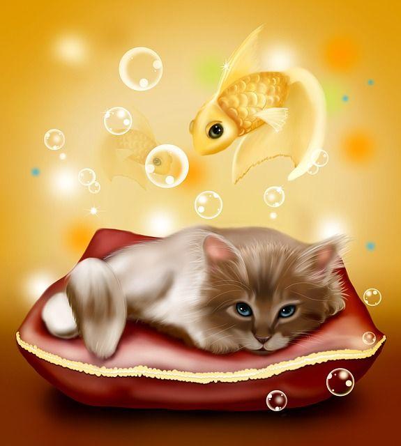 Un doux rêve de chaton ! Chaton, Poissons, Rêve, Illustration