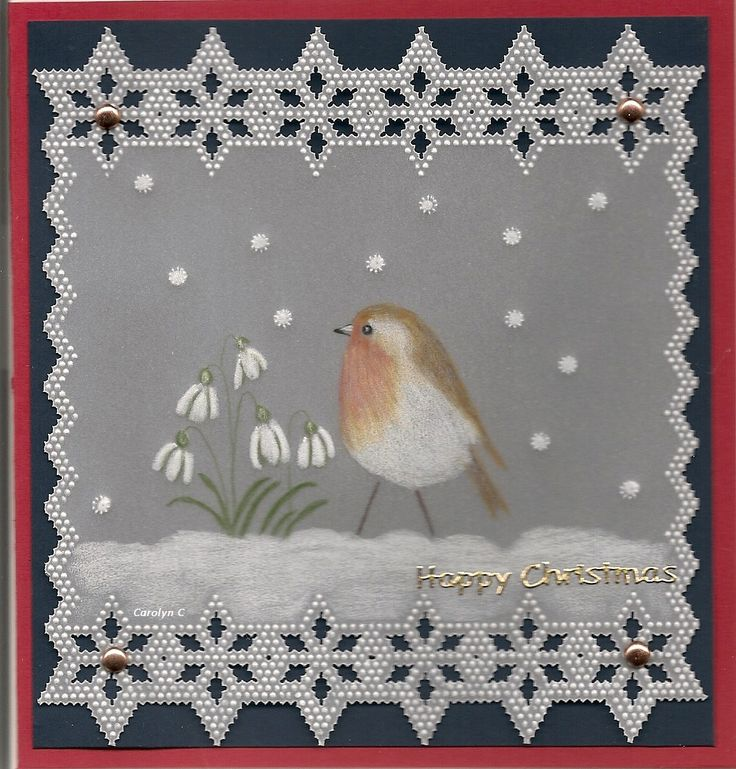 By Carolyn C. Robin Christmas Card.