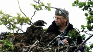 WWF Itämeren puolesta videot