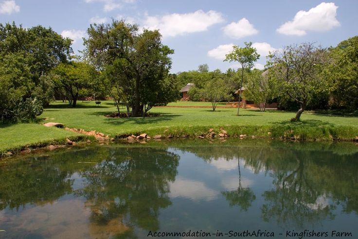 Beautiful at Kingfishers Farm. http://www.accommodation-in-southafrica.co.za/Gauteng/Magaliesburg/Kingfishers.aspx