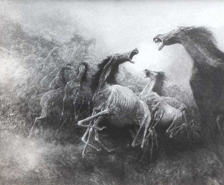Artist Zdzislaw Beksinski (24 February 1929 – 21 February 2005) was a renowned Polish painter, photographer, and sculptor. Beksiński executed his paintings and drawings either in what he called a 'Baroque' or a 'Gothic' manner.