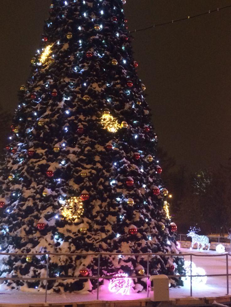 Москва, парк Сокольники
