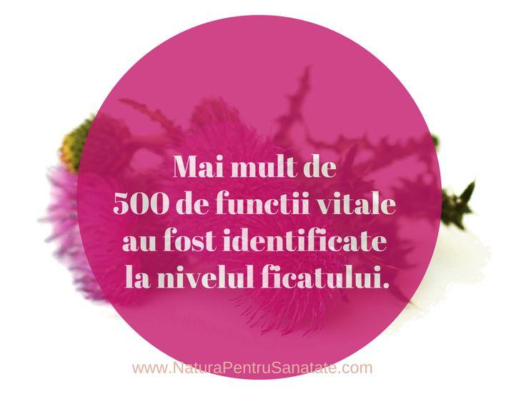 Ficatul indeplineste peste 500 de functii vitale. http://naturapentrusanatate.com/alianta-pentru-protectia-hepatica  #DetoxifiereFicat #ProtectieHepatica  #Silimarina
