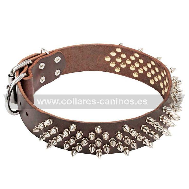 """collar#púas#perros  Collar de púas para perros """"Aguijón de abeja"""" - > 77,38 €"""