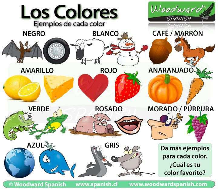 Ejemplos de cada color en español - Examples of each Color in Spanish