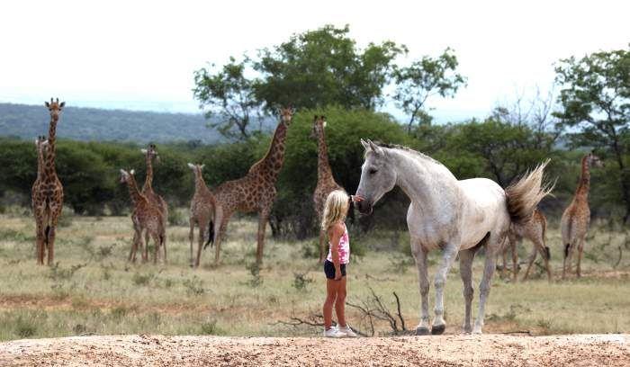 African Horse Safaris — Can Families go on Horseback Safari in Africa?