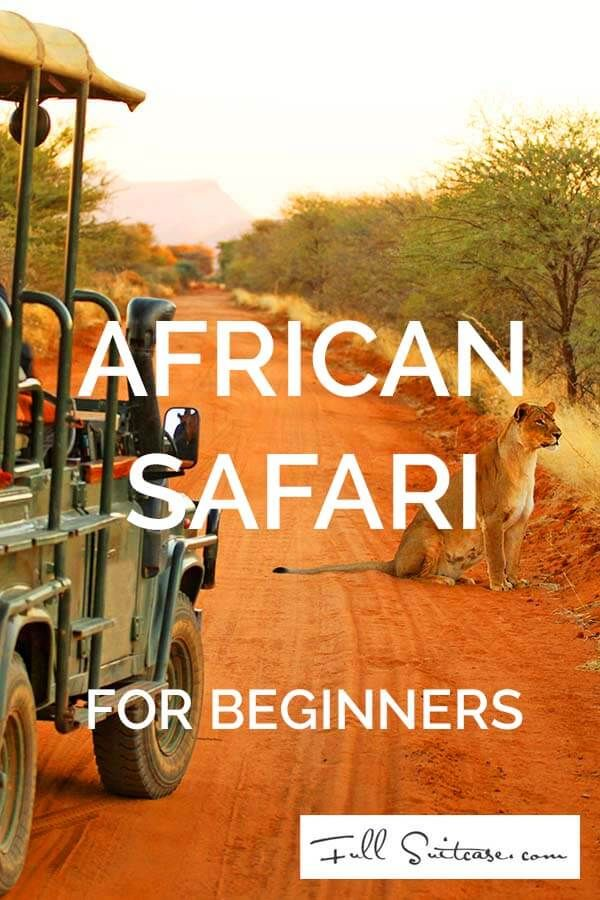 All You Need to Know Before Going on Safari in Africa