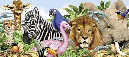 Frumoasa verde: Curiozități din lumea animalelor + documentar (RO)...