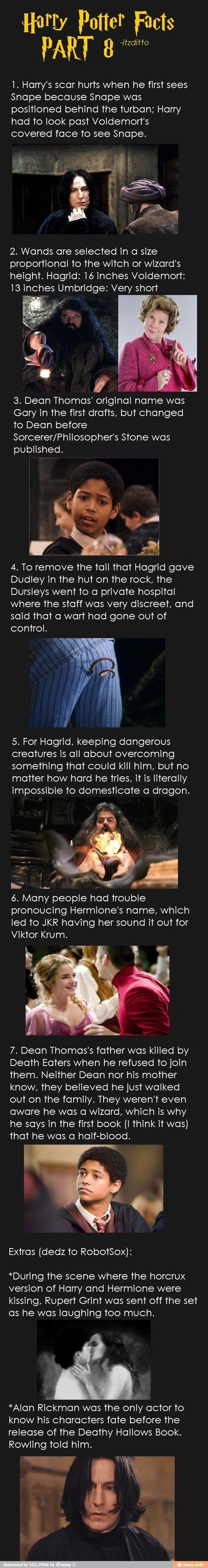 Harry potter: true or false, it is all intriguing